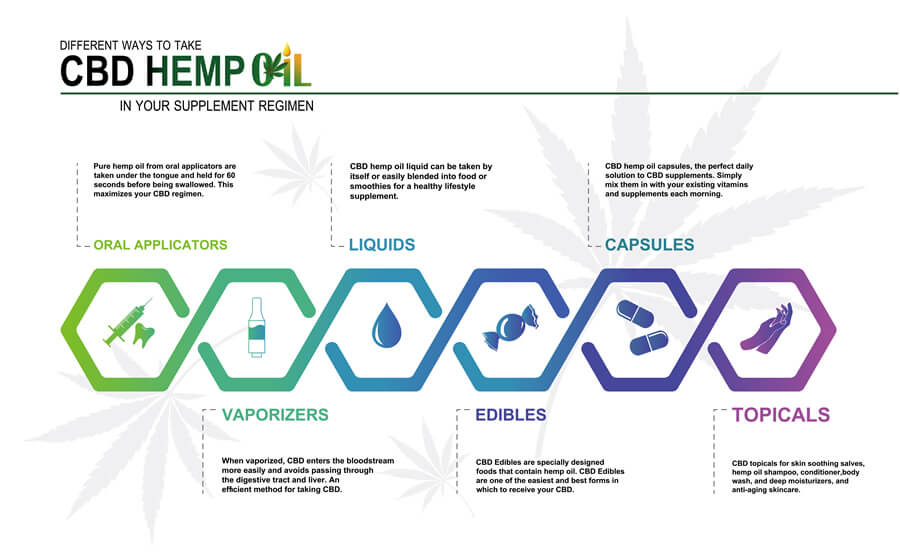 An infographic showing the different ways to take CBD Oil